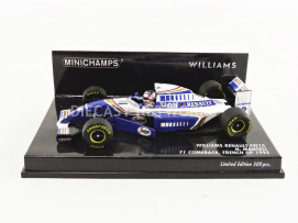 WILLIAMS RENAULT FW16 - COMEBACK FRANCE GP 1994